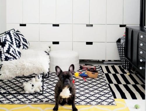Ikea-family-live-b-w-frenchie
