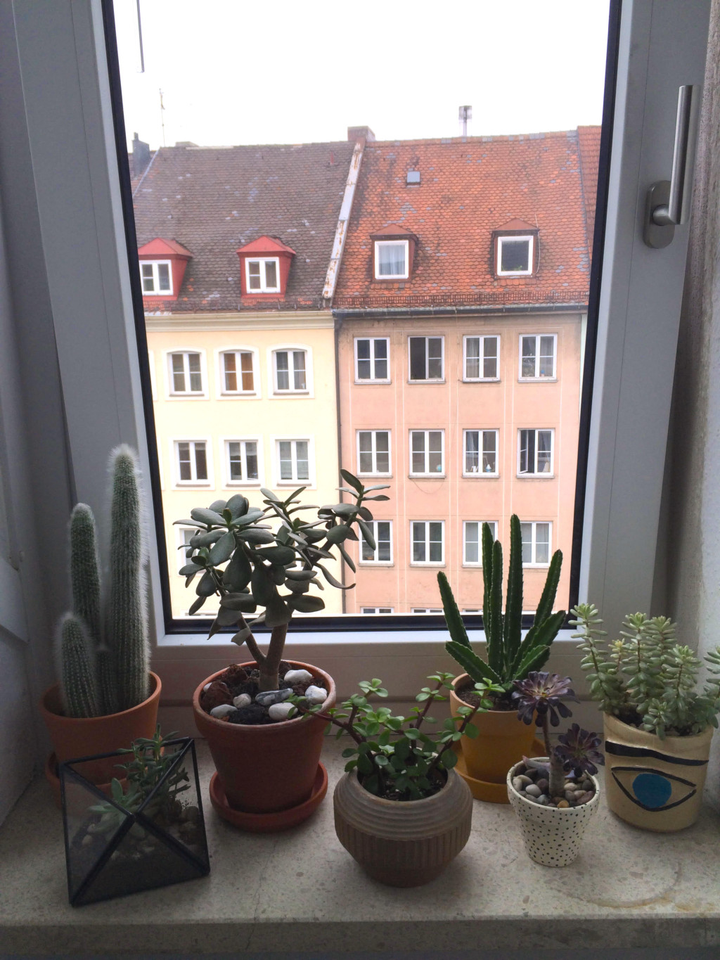 Life Unstyled plants on window sill